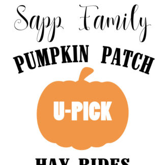 Pumpkin Patch painted wooden sign - Here's Your Sign workshop